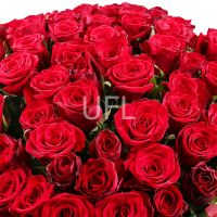 Bouquet 1000 roses - 1001 red roses