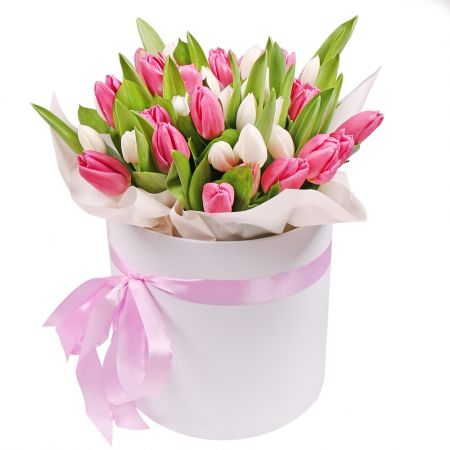 Bouquet 35 Pink and white tulips in a box