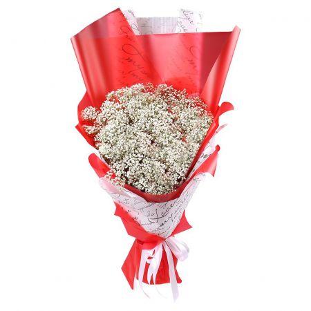 Bouquet Bouquet of baby\'s breath