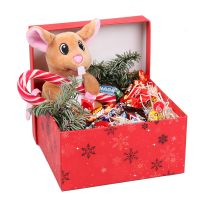 Product Present for St.Nicolas