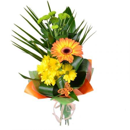 Bouquet Sundog